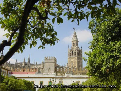 Seville, the Giralda: the Cathedral's Tower