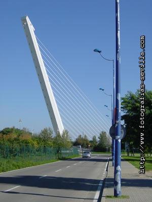 Alamillo Bridge of Seville