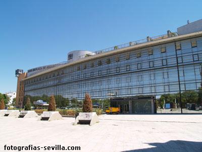 The plaza de armas hotel in seville spain for Suites sevilla plaza