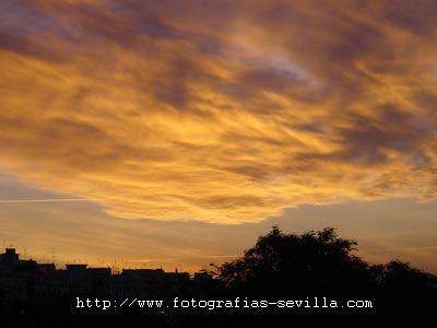 Seville, sunset from the Paseo Colon