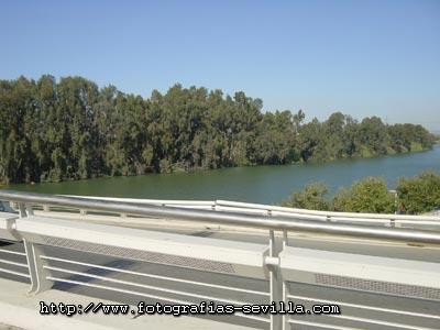 Guadalquivir's riverside from the Alamillo Bridge