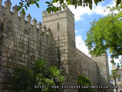 Fotoiberoamérica, exposición de fotografías latinoamericanas en el Alcázar de Sevilla hasta el 8 de diciembre de 2010