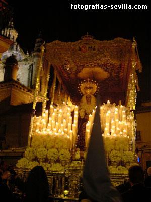 Palio de la Virgen de los Desamparados, hermandad de San Esteban de Sevilla